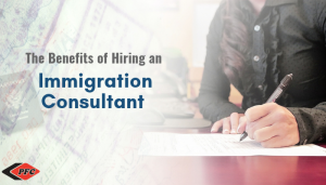 What is an Immigration Consultant
